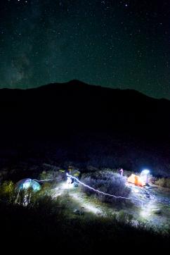 Tent Whiz